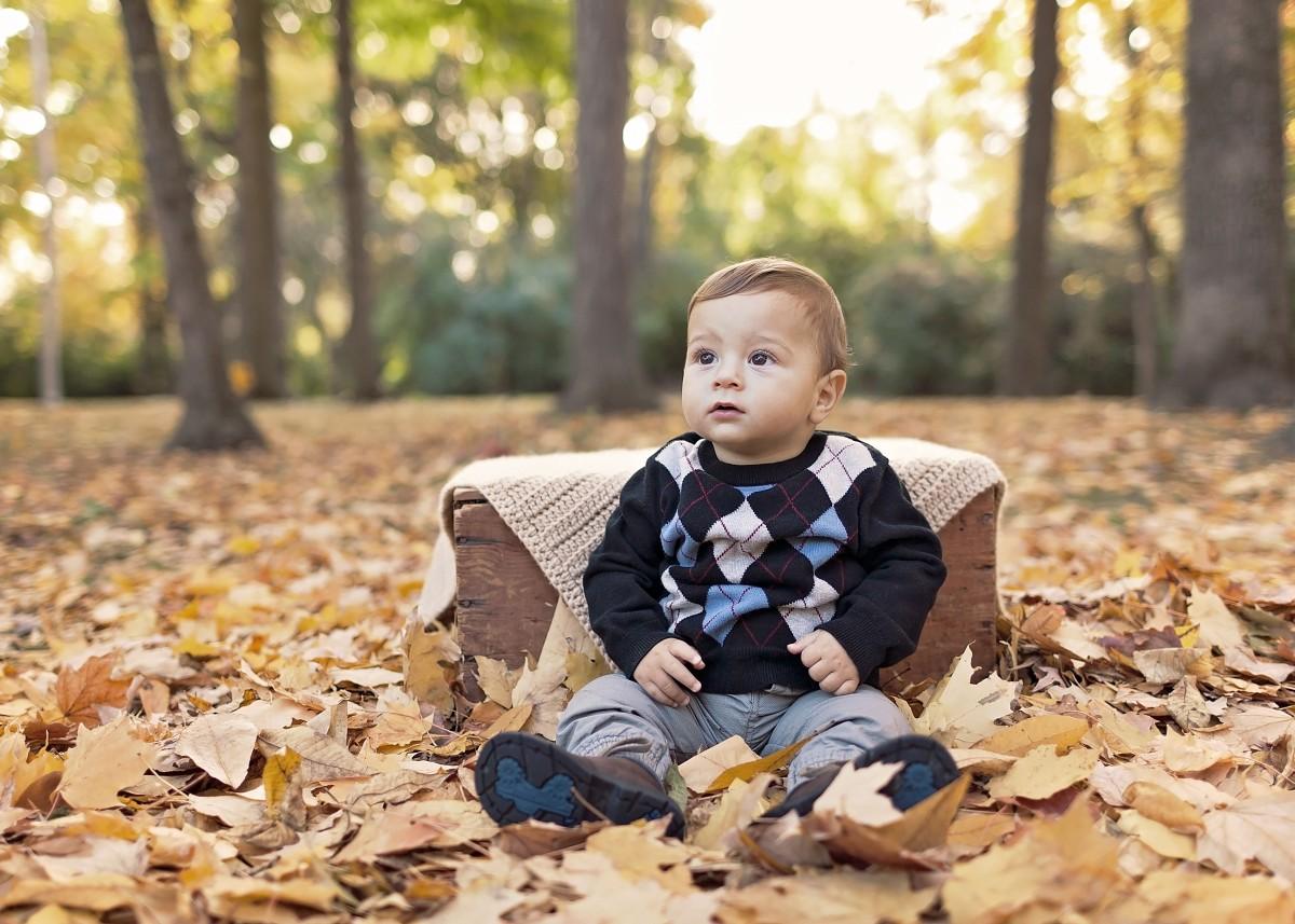 la personne gens feuille garçon enfant mignonne mâle printemps l'automne enfant bleu bébé enfance saison famille bambin peu des bois adorable bébé garçon Photographie de portrait