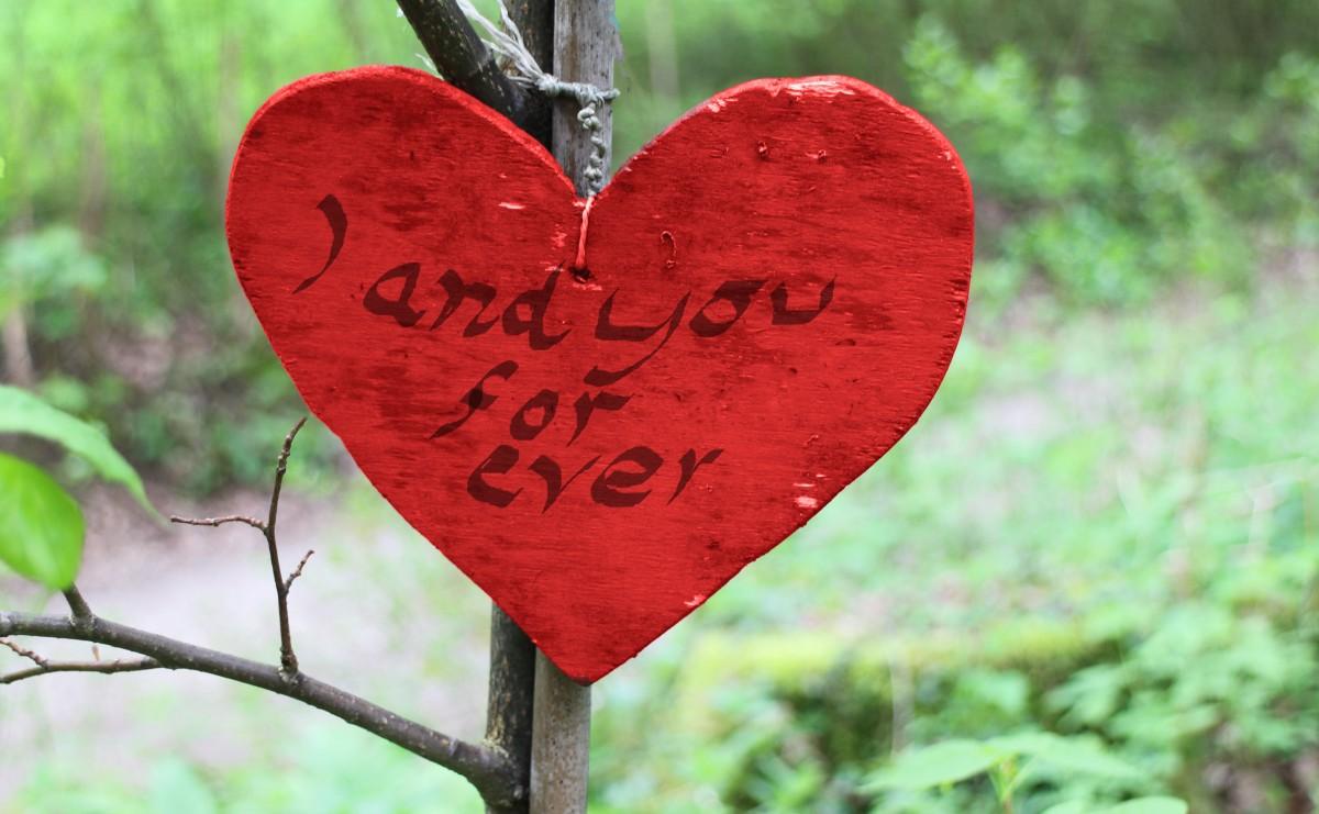 como esquecer a pessoa amada