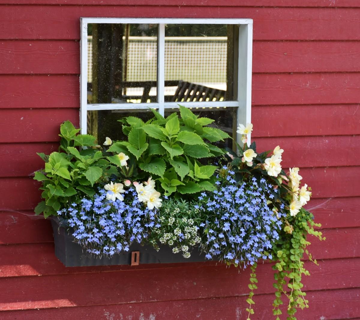 window flower garden ideas