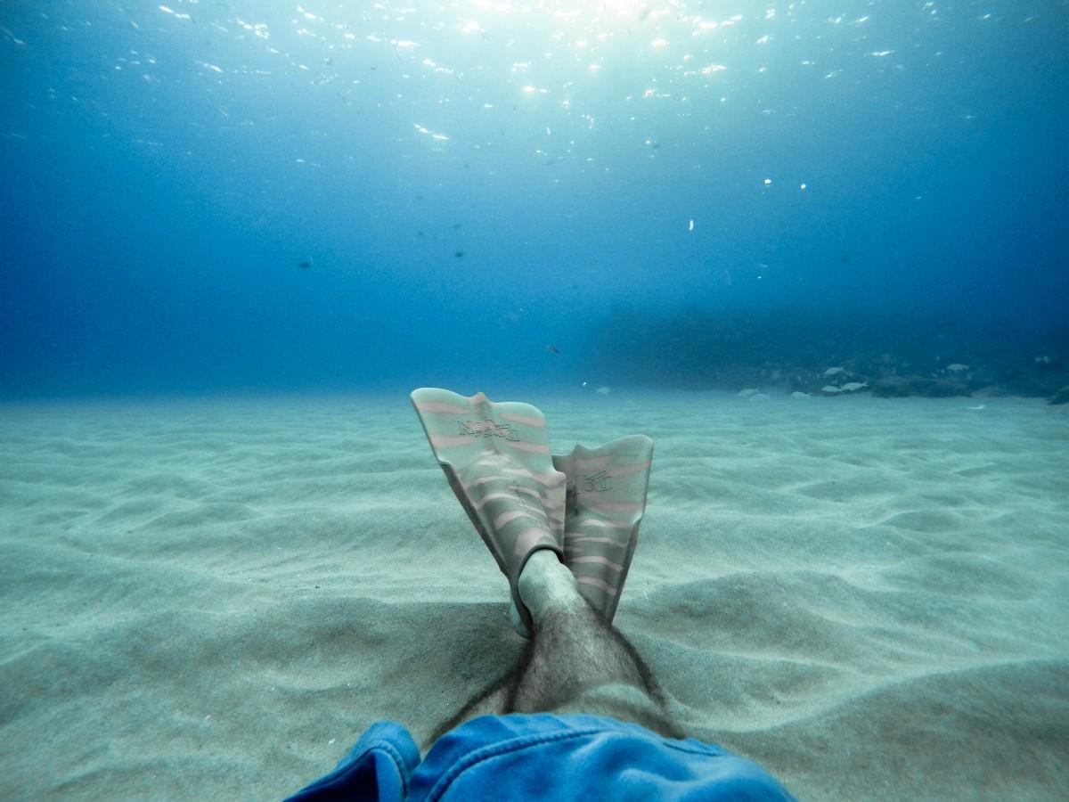 Free Images : sea, ocean, diving, underwater, swim, blue ...