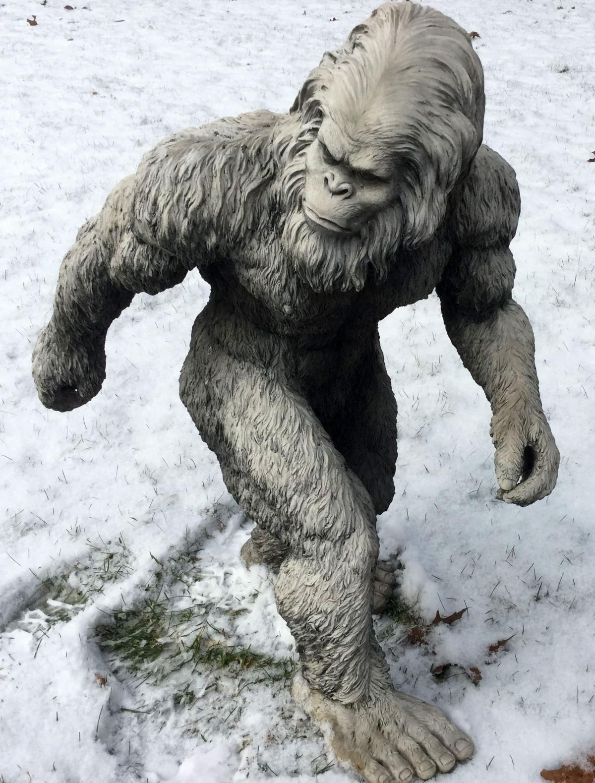 Gambar Salju Patung Lumpur Amerika Serikat Seni