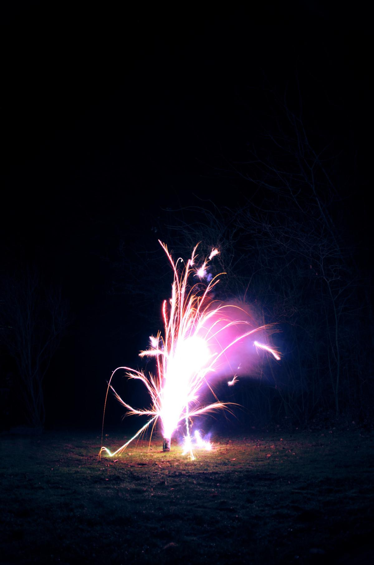 Celebration New Year