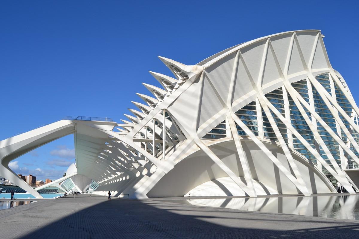 Fotos gratis arquitectura estructura sala de pera for Estructura arquitectura