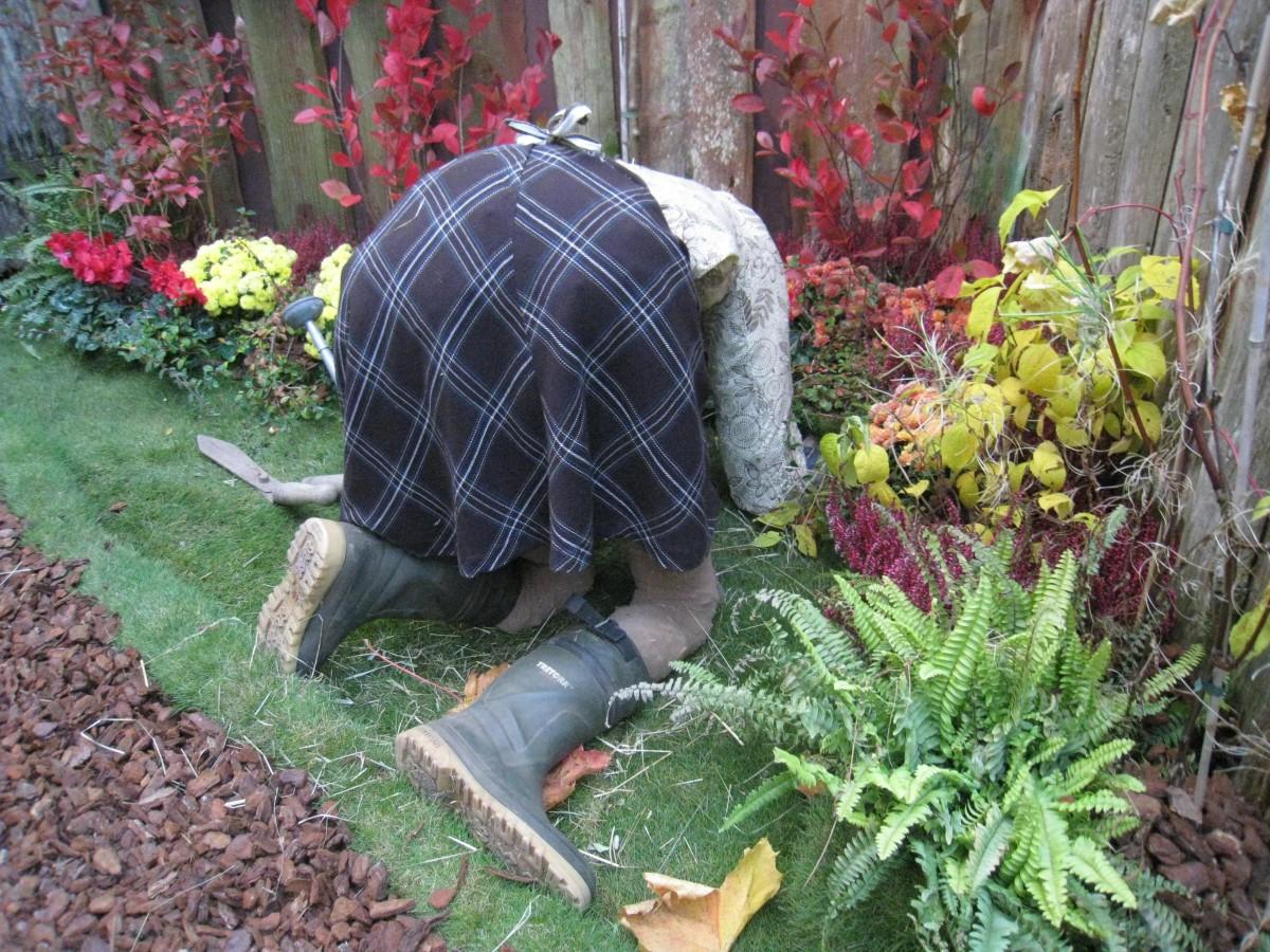 https://c.pxhere.com/photos/43/f5/gardening_women_flowers_boots_plants_clothing_grass-1008867.jpg!d