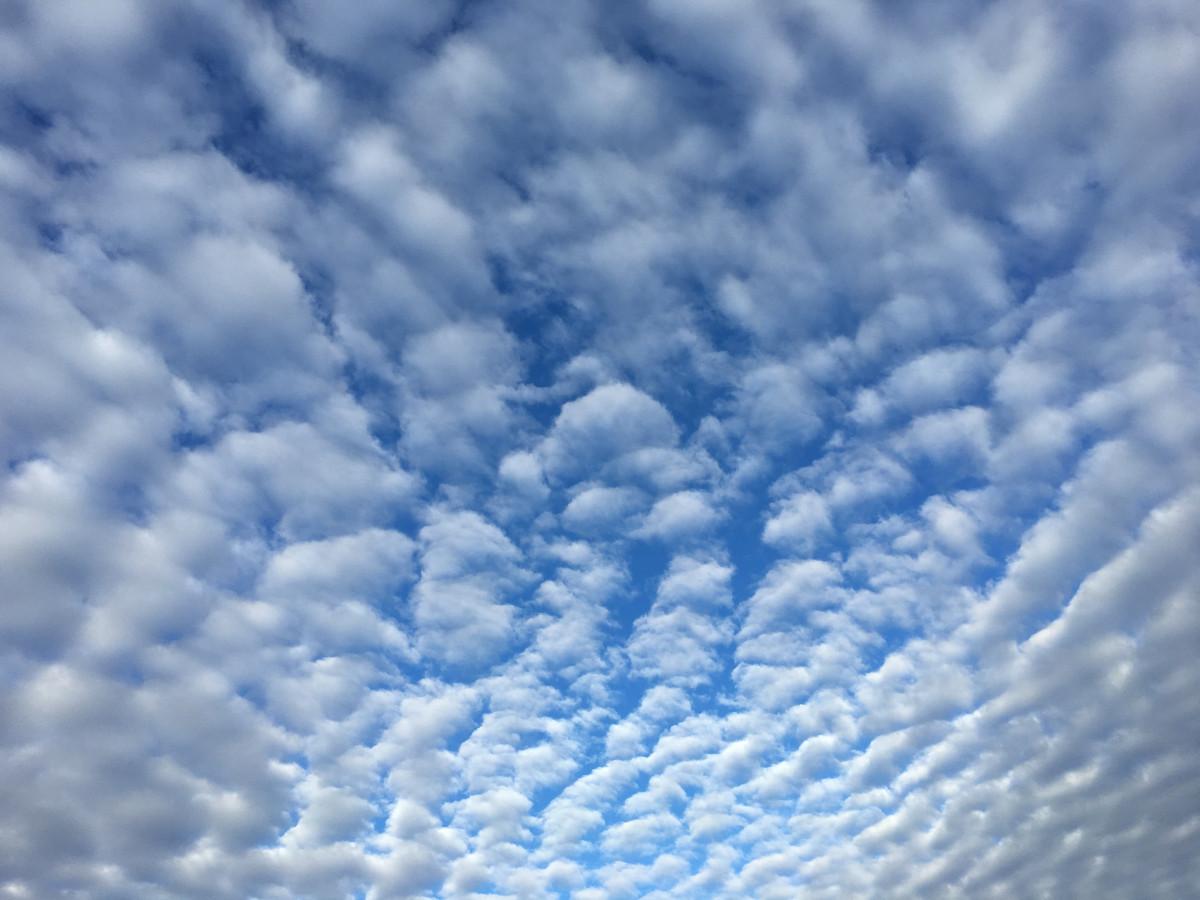 картинки про облако долго берегов