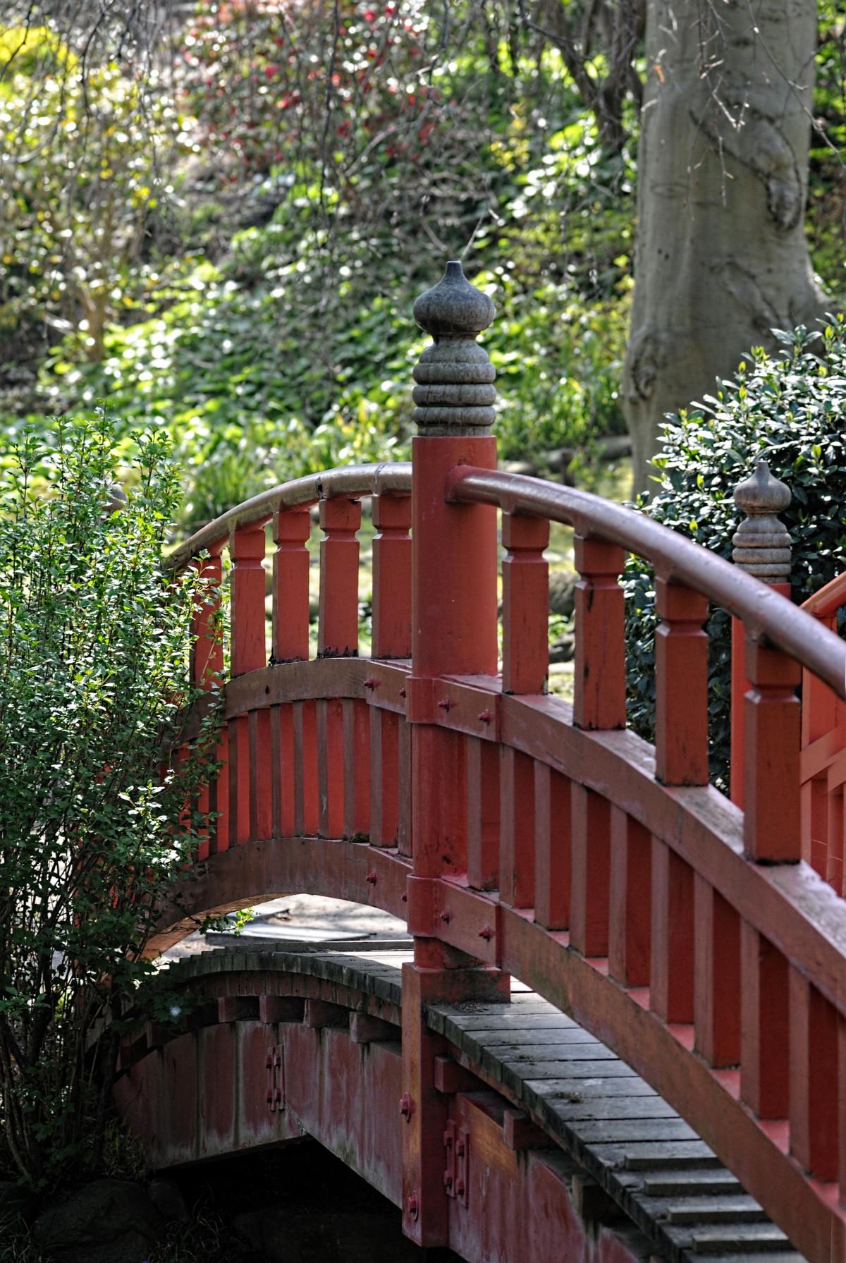 Images gratuites la nature pont fleur parc jardin for Pont jardin zen