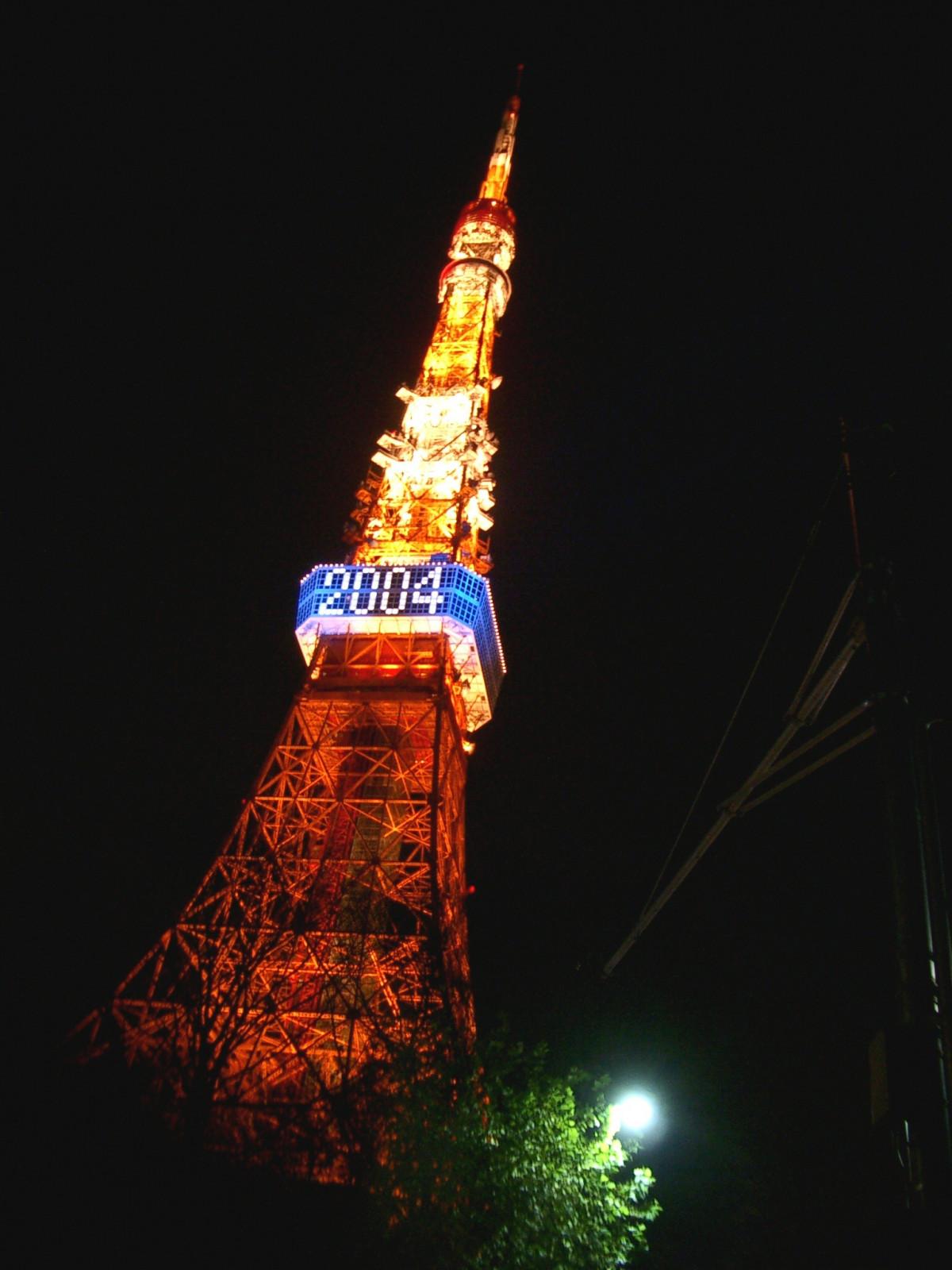 Free Images : night, lighting, christmas decoration, tokyo ...