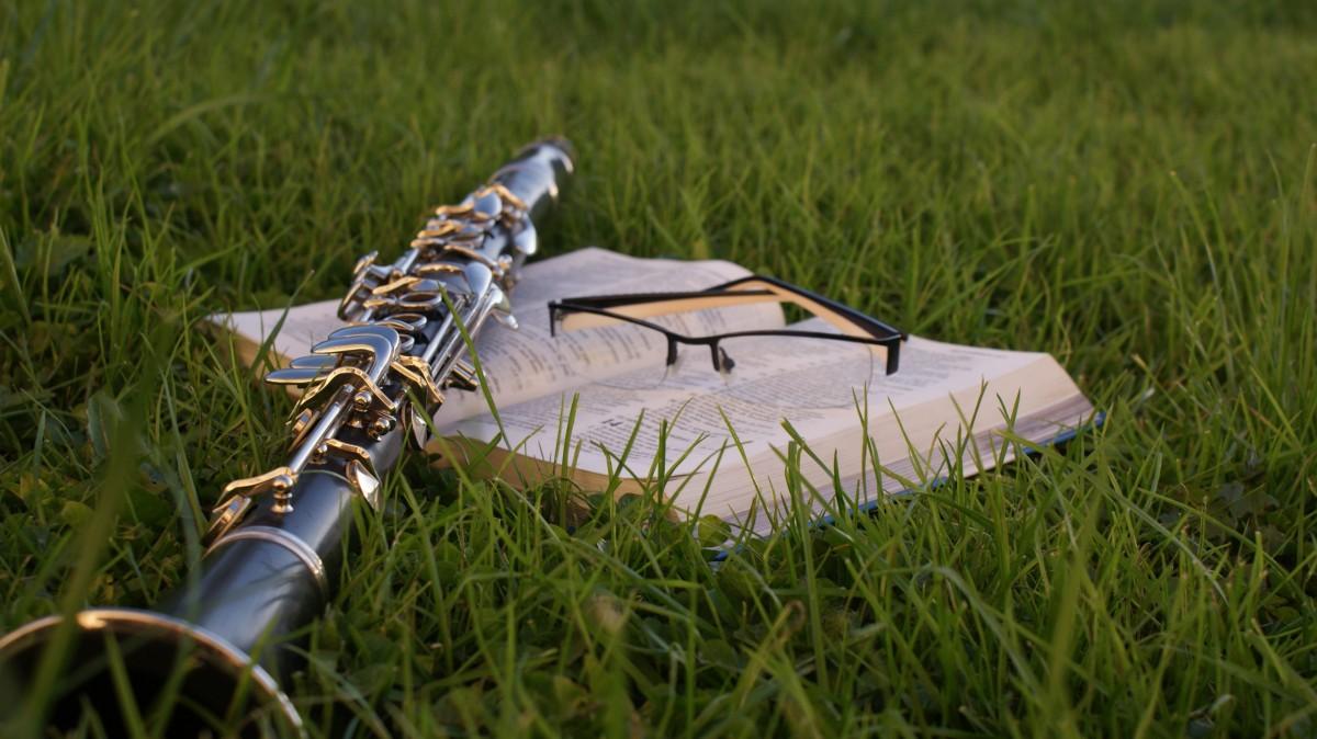 herbe la musique pelouse vert agriculture Bible club de golf clarinette