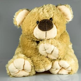 play,bear,toy,teddy bear,textile,plush