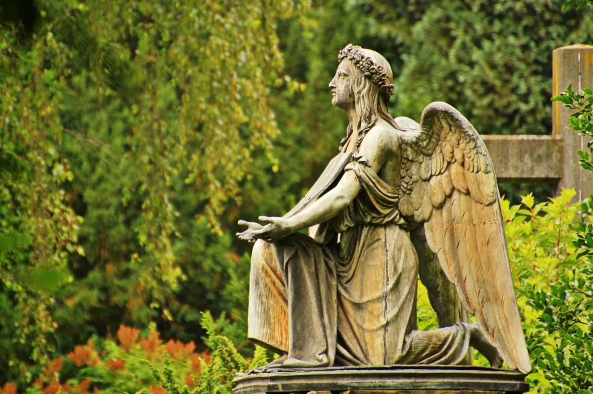stary atmosfera pomnik listowie statua Zielony pamięć cmentarz ogród nagrobek śmierć klęczący drzewa grób rzeźba anioł sztuka krótkotrwałość wiara krzewy uczcić nadzieja modlitwa grób umierać groby przejściowy żałoba pożegnanie pogrzeb Harmonia wskrzeszenie mitologia stary cmentarz śmiertelny kamienny anioł pogrzeb strona