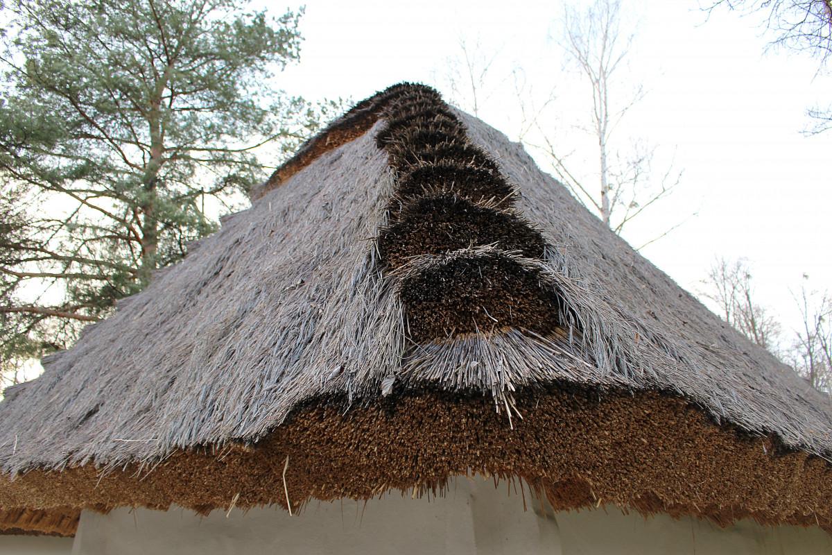 германии разрешили картинки соломенных крыш узнаете, какие сорта