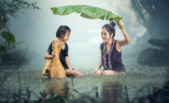 árbol,naturaleza,agua,césped,al aire libre,gente