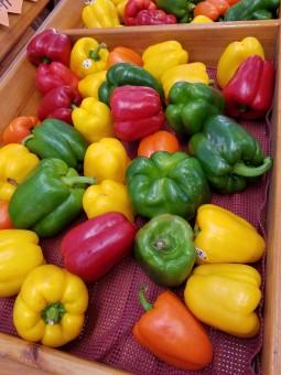 Таблица, растение, Еда, Пища, салат, Зеленый