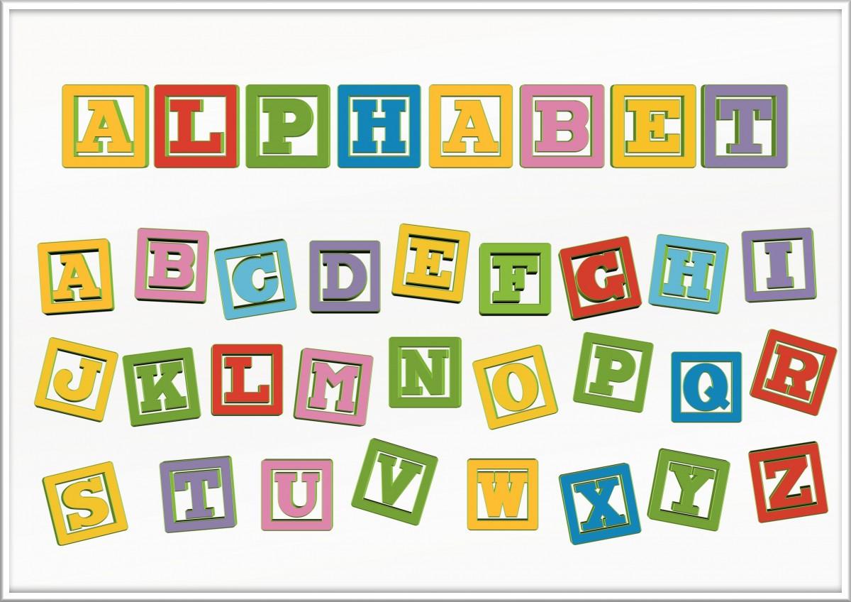 Gambar Book Baca Baca Kucing Alfabet Katak Gajah Pendidikan