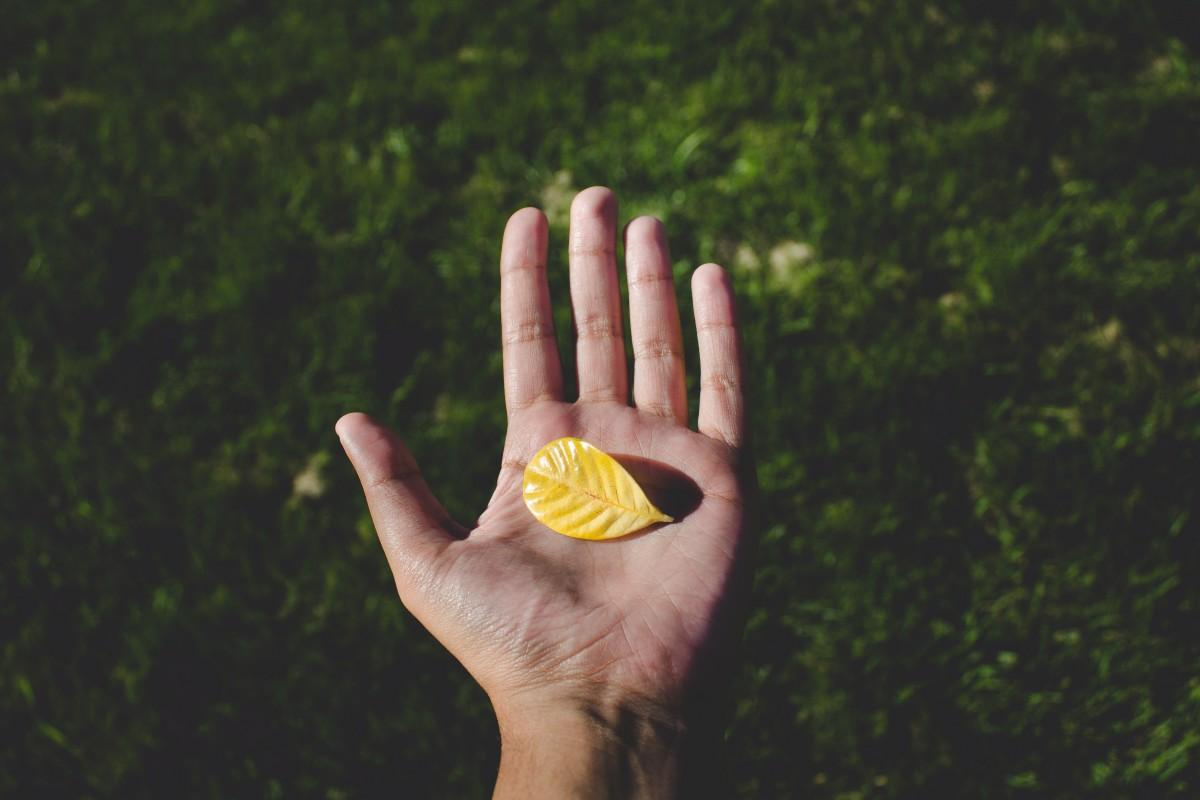 Los mejores productos para personas con Parkinson