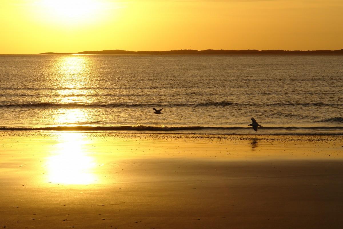 пляж берег закат живые картинки туда