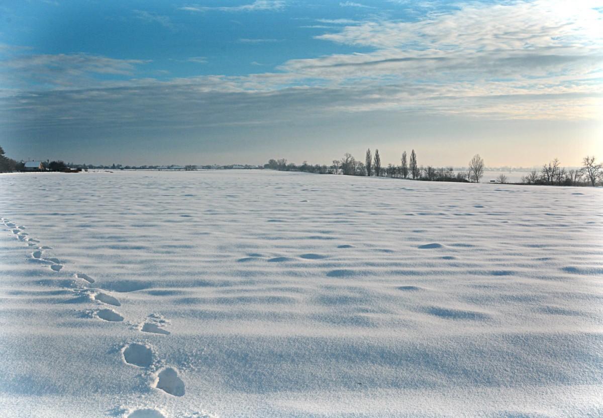 snow winter seasons sea - photo #38