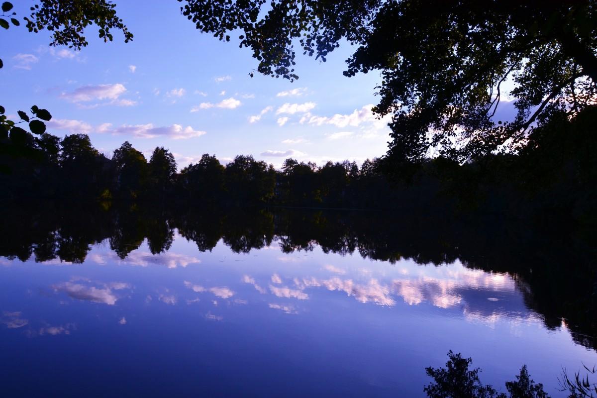 Gambar : pemandangan, alam, hutan, awan, langit, sinar