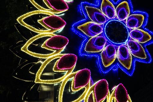 Fondo De Fiesta Diseño Decoracion Confeti Arte Patrón: Fotos Gratis : Ligero, Abstracto, Estructura, Estrella
