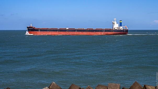 mar,costa,Oceano,enviar,vehículo,barco de carga