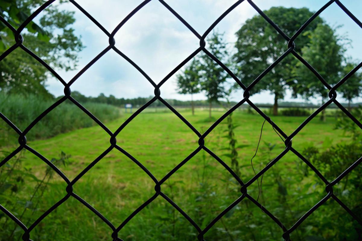 Забор из проволоки