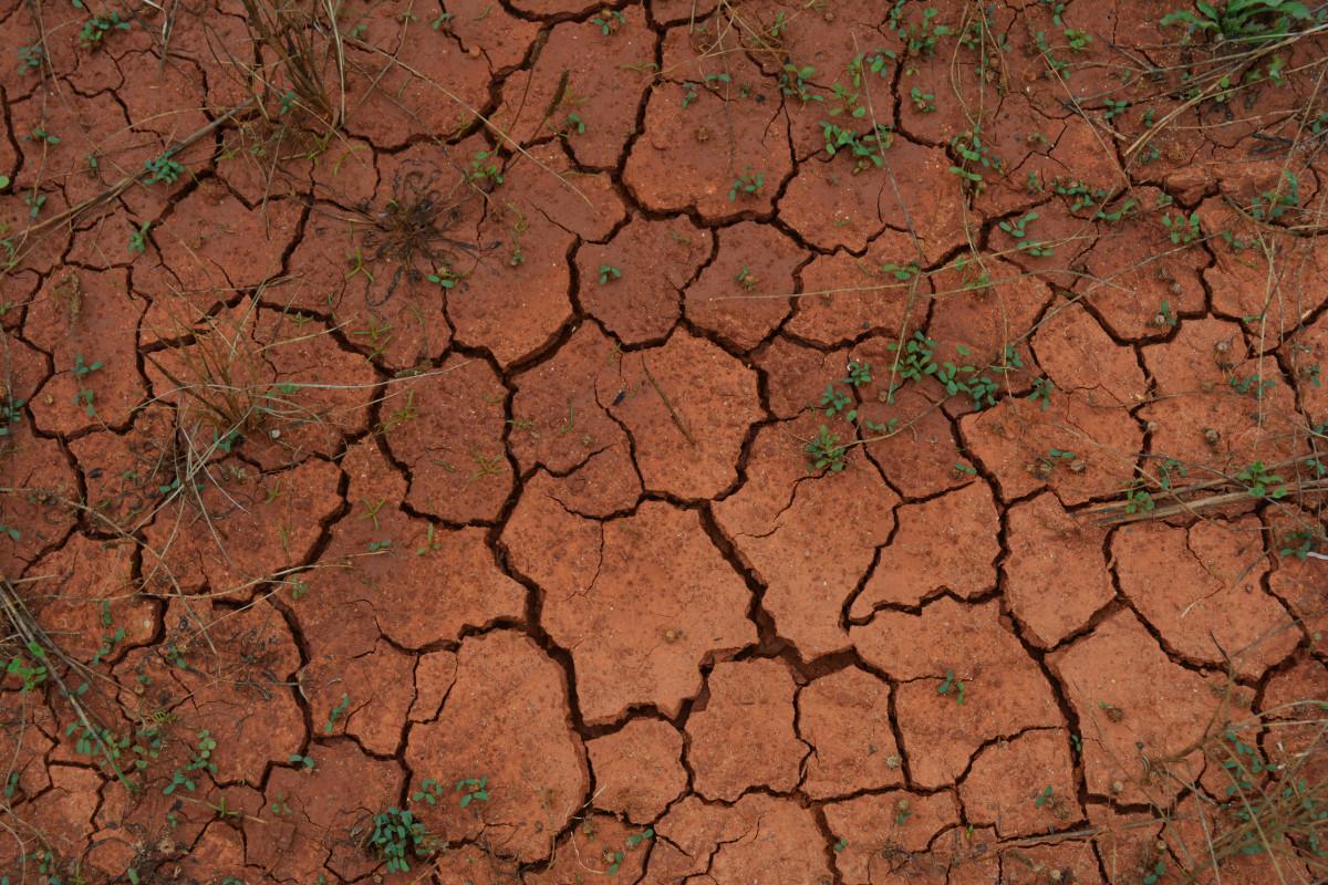 屋外 接地 テクスチャ 葉 壁 アスファルト ドライ 褐色 土壌 熱 粘土 干ばつ