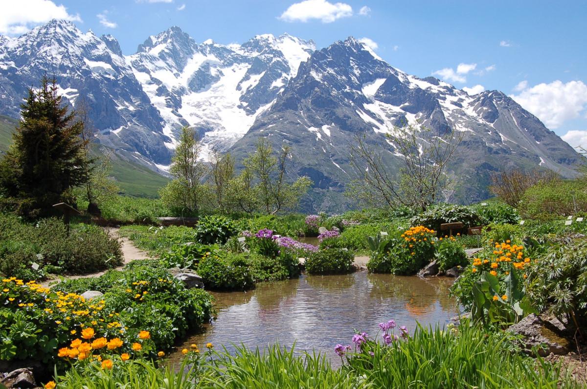 Images gratuites paysage r gion sauvage montagne prairie fleur lac vall e cha ne de - Jardin de montagne ...