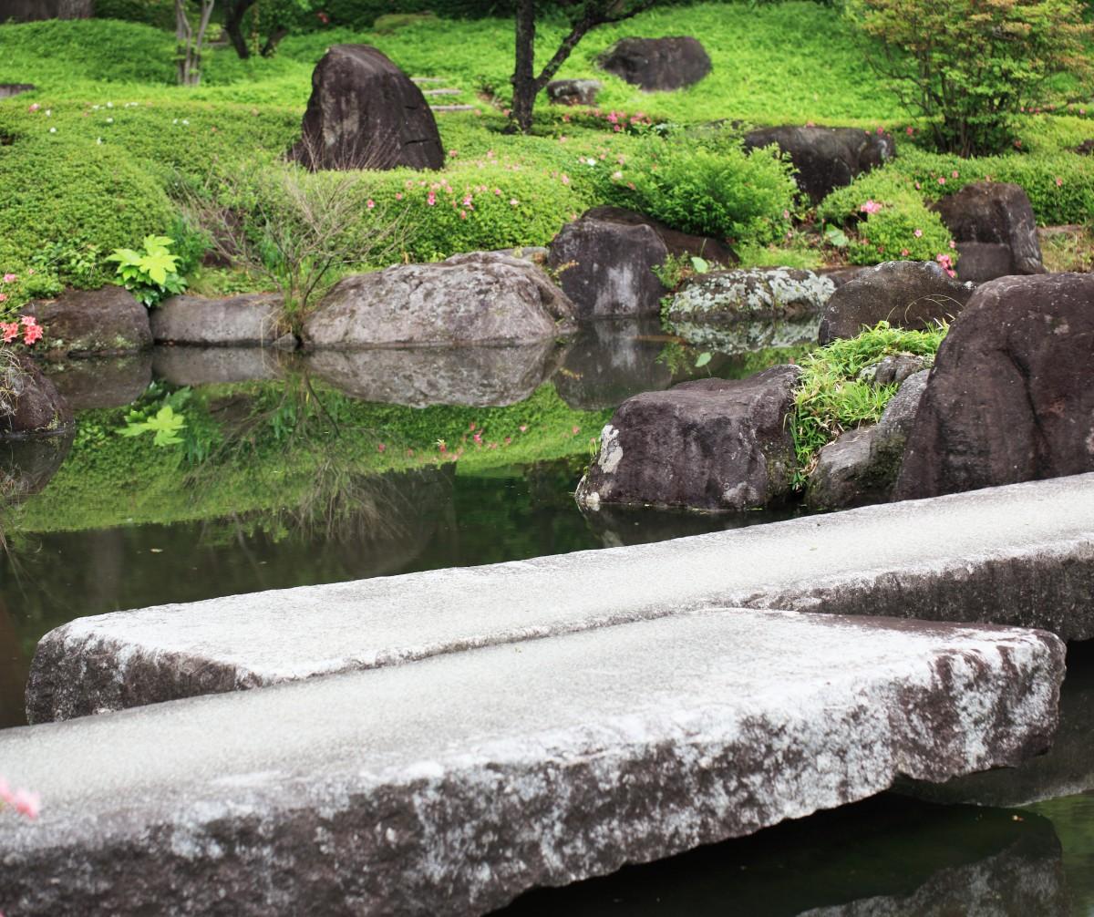 Images gratuites arbre plante panorama tang for Rocher jardin japonais