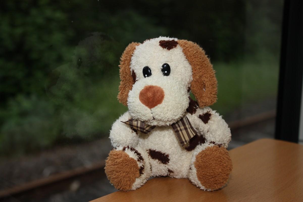 Kostenlose foto : Welpe, niedlich, Spielzeug, Teddybär, häkeln ...