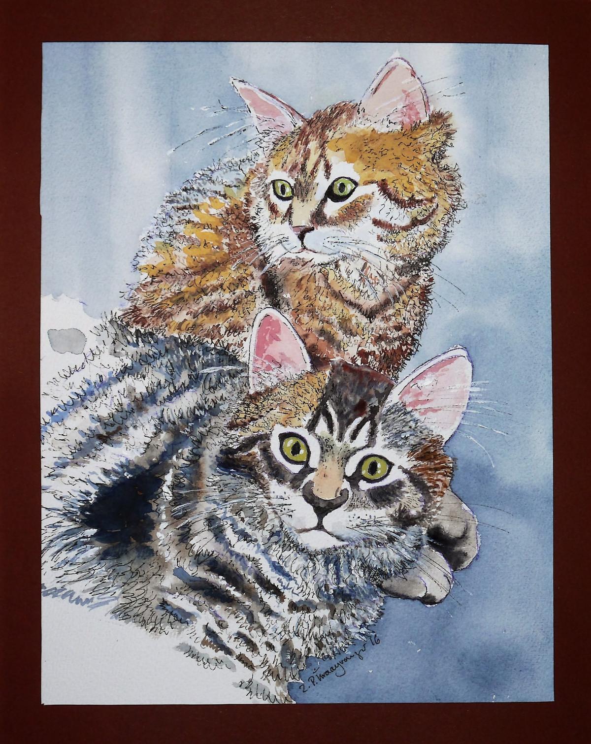 Koleksi Gambar Sketsa Kucing Duduk