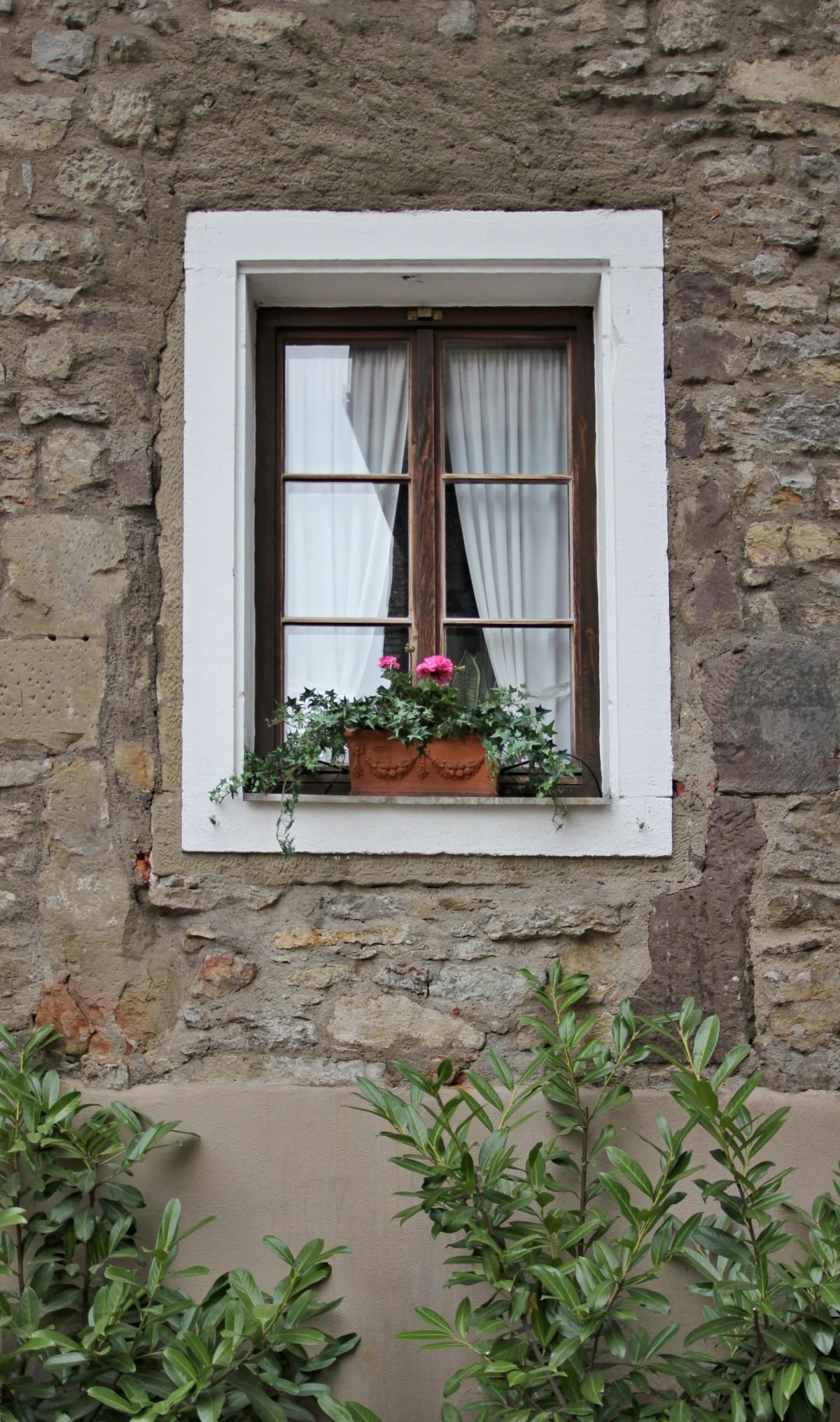Images gratuites bois fleur fen tre vieux porche for Porche de maison en bois