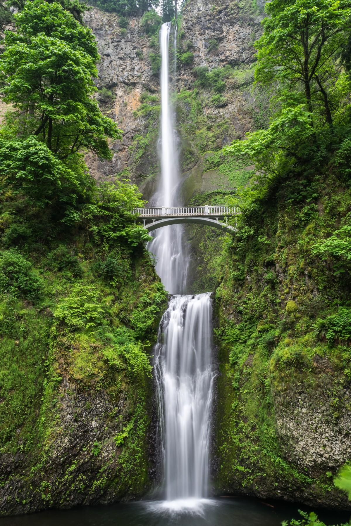 images gratuites arbre cascade pont plan d 39 eau for t tropicale ravin chute d 39 eau. Black Bedroom Furniture Sets. Home Design Ideas
