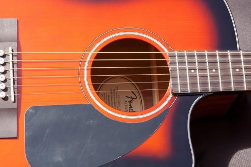 guitar corpus soundbox wood musical instrument circular sonar blanket web