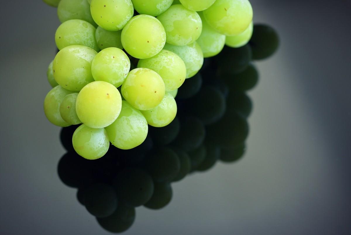 конце картинки зеленого винограда последнее время мужчины