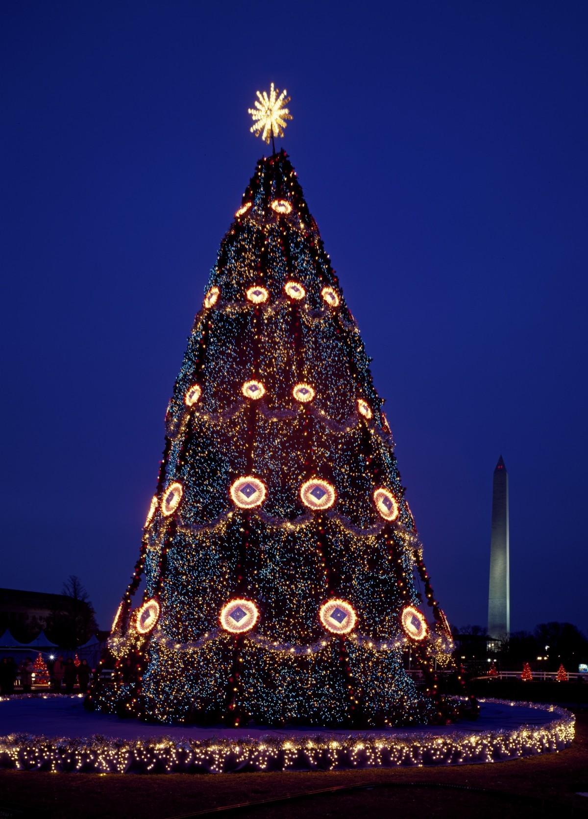 tree night star evening tower evergreen & Free Images : branch evergreen holiday fir decor christmas ... azcodes.com