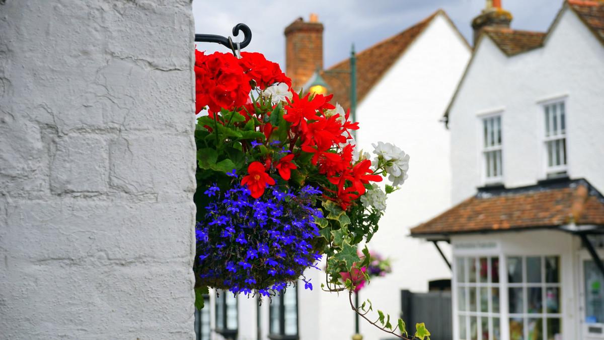 images gratuites fleur plante maison floraison fen tre mur floral balcon bouquet. Black Bedroom Furniture Sets. Home Design Ideas