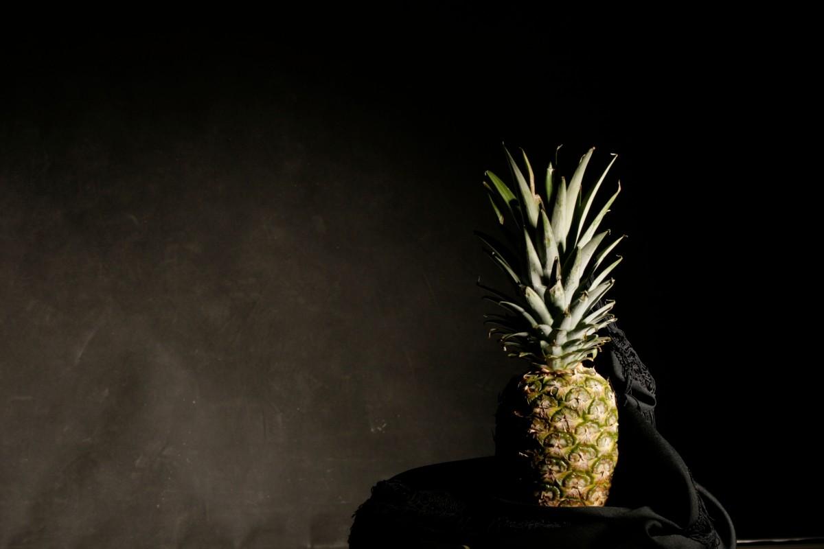 Free Images Plant Leaf Green Black Lighting Long Exposure - Fruit provides light for long exposure photographs