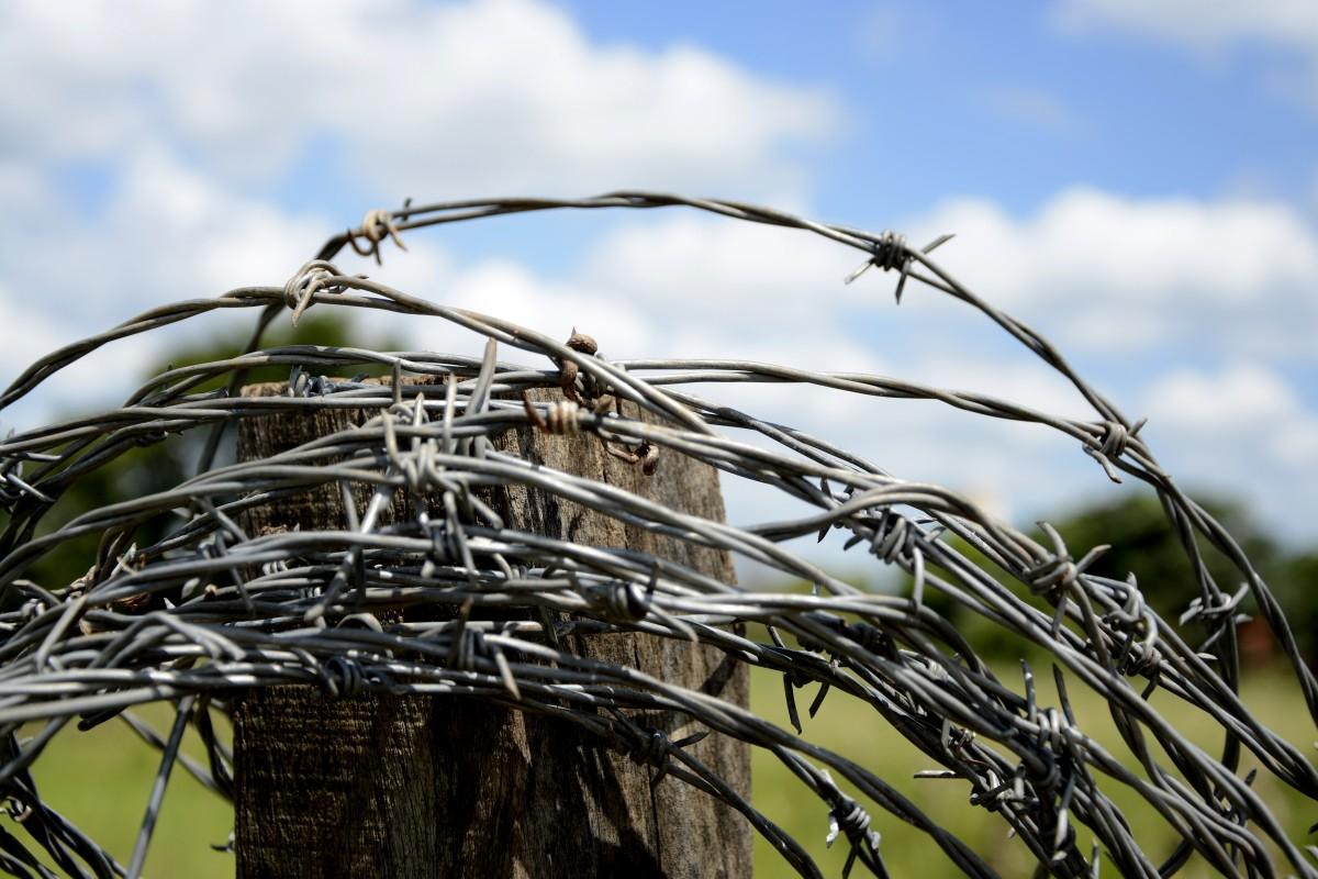kostenlose foto baum natur gras ast zaun stacheldraht holz bauernhof blume wind das. Black Bedroom Furniture Sets. Home Design Ideas