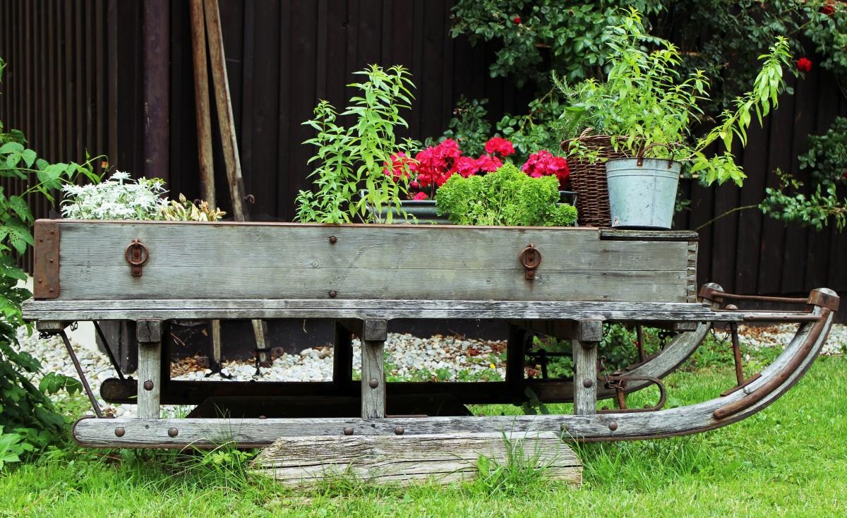 Fotos gratis mesa al aire libre planta banco c sped for Banco de paletas al aire libre