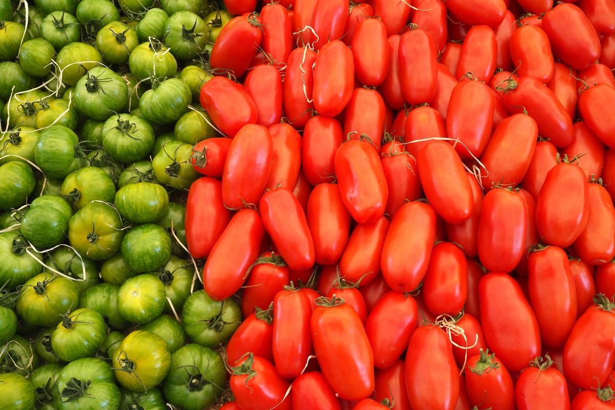 растение, фрукты, Пища, Красный, производить, Овощной, Свежий, помидор, овощи, Помидоры, цветущее растение, Наземный завод, Болгарский перец и перец чили