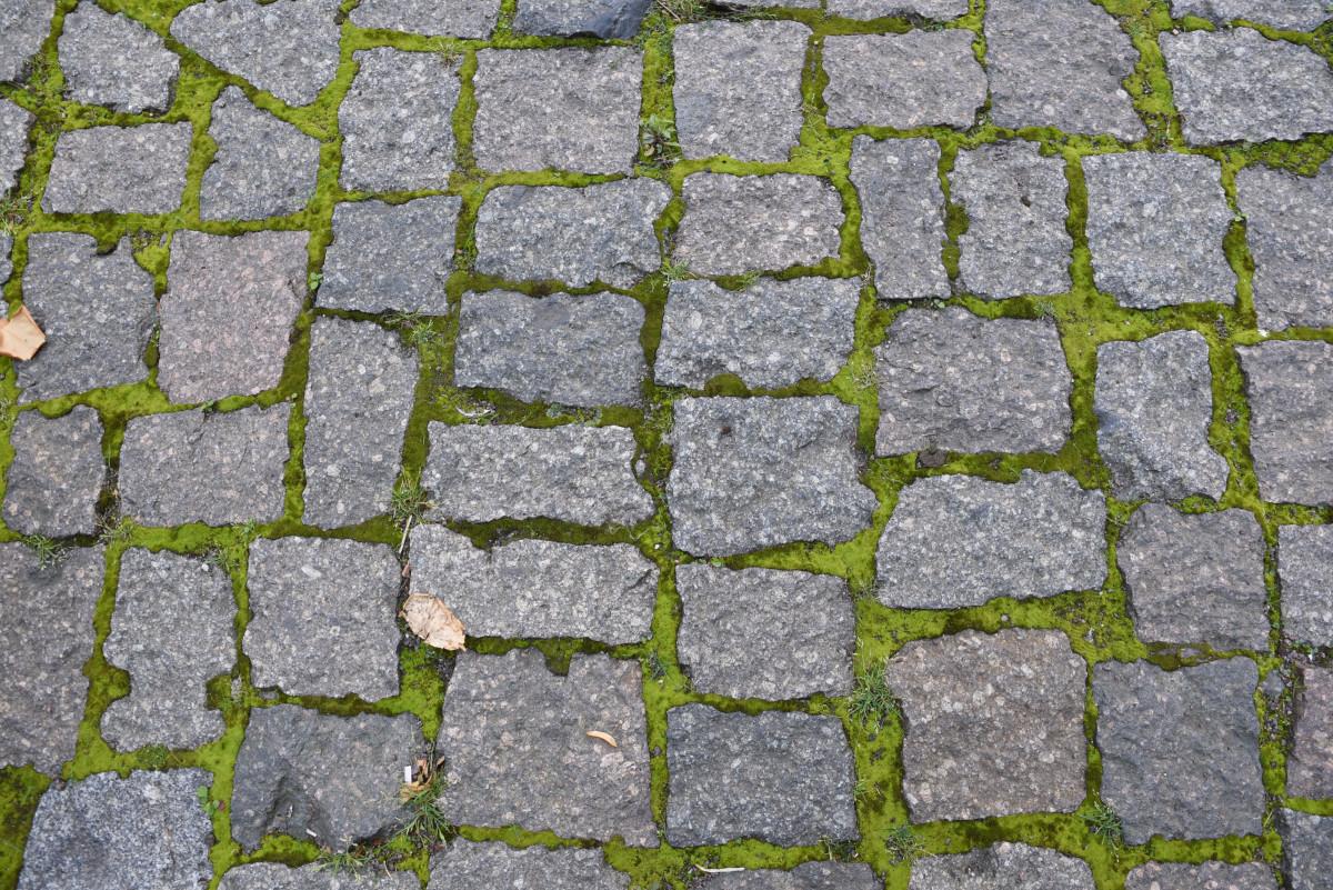 Free Images : grass, structure, ground, texture, sidewalk