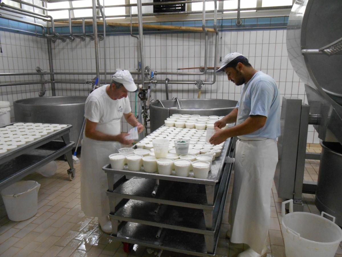 Usine - Agro-alimentaire - Ouvriers - Travail - Industrie - SchoolMouv - Géographie - CM1