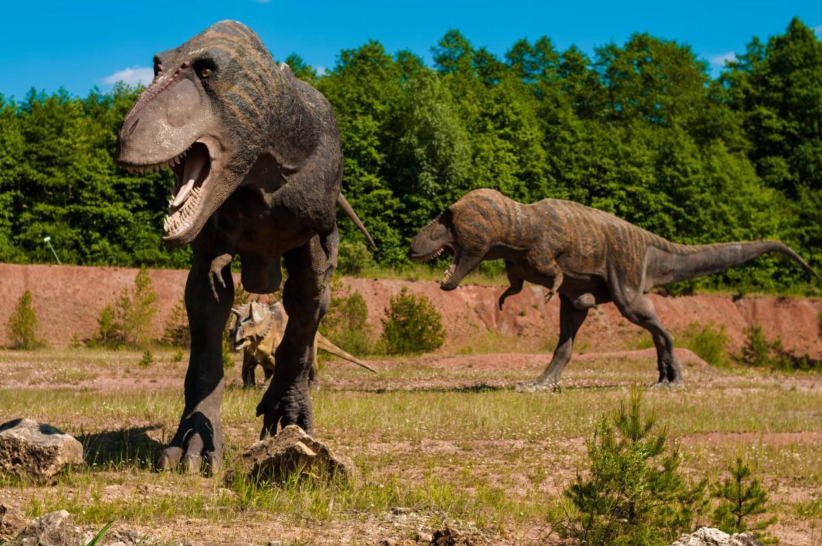 доисторические животные смотреть картинки его сыновья