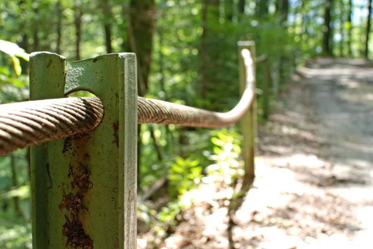 fil de clôture acier