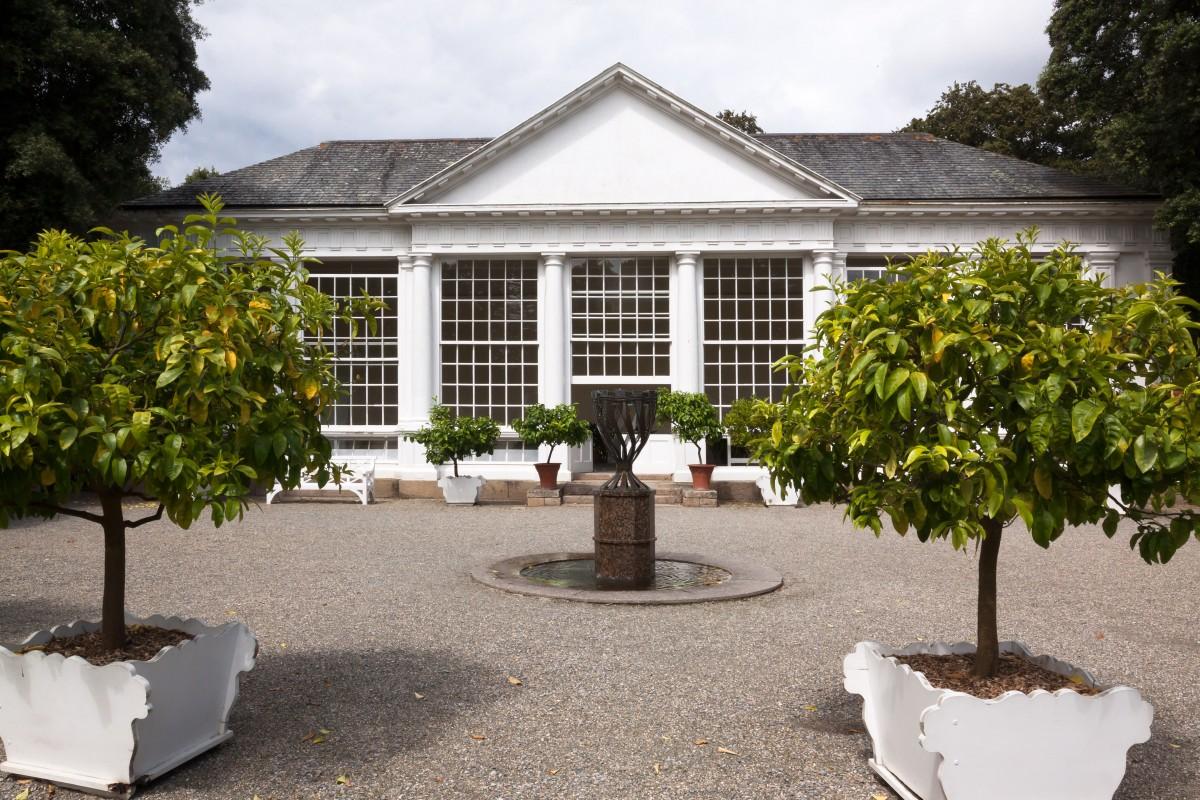 Fotos gratis mesa rbol arquitectura flor vaso for Piani di casa patio gratuito
