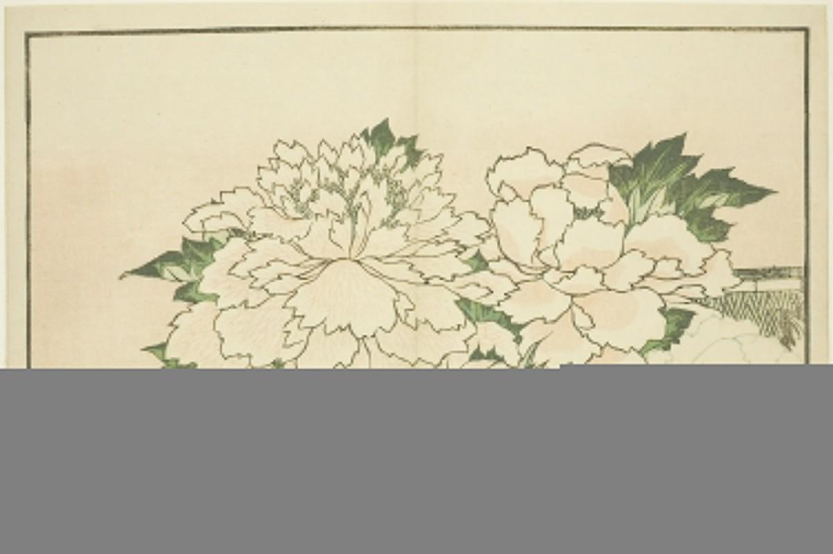 Gambar Flora Daun Desain Desain Bunga Menanam Merangkai Bunga