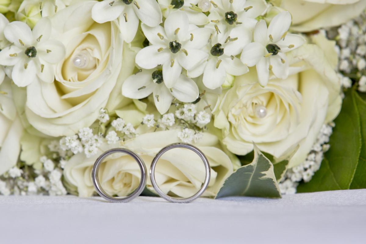 Fotos gratis blanco flor p talo boda flora flores - Cortar hierba alta ...