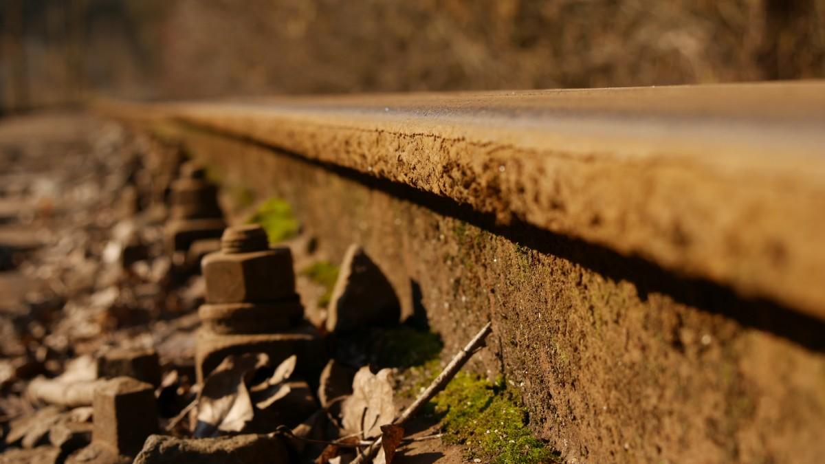 무료 이미지 : 나무, 잔디, 선로, 들, 농장, 늙은, 수송, 가을, 흙 ...