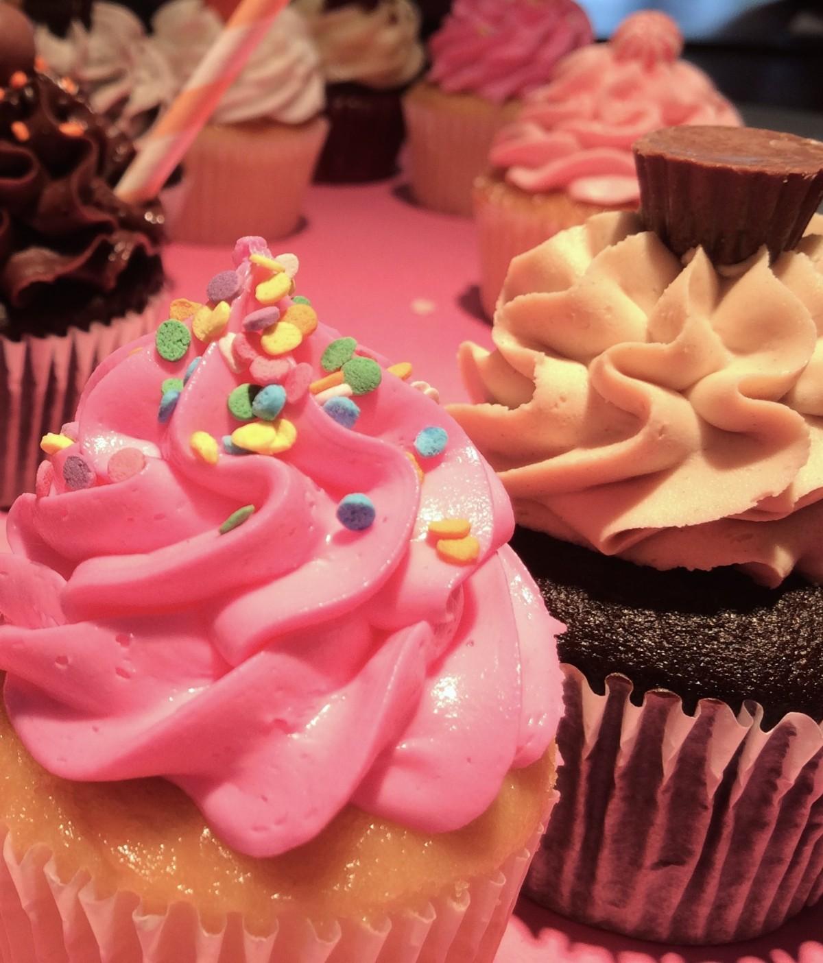 Free images flower food plate blue cupcake baking frosting dessert icing fondant - Creme decoration cupcake ...
