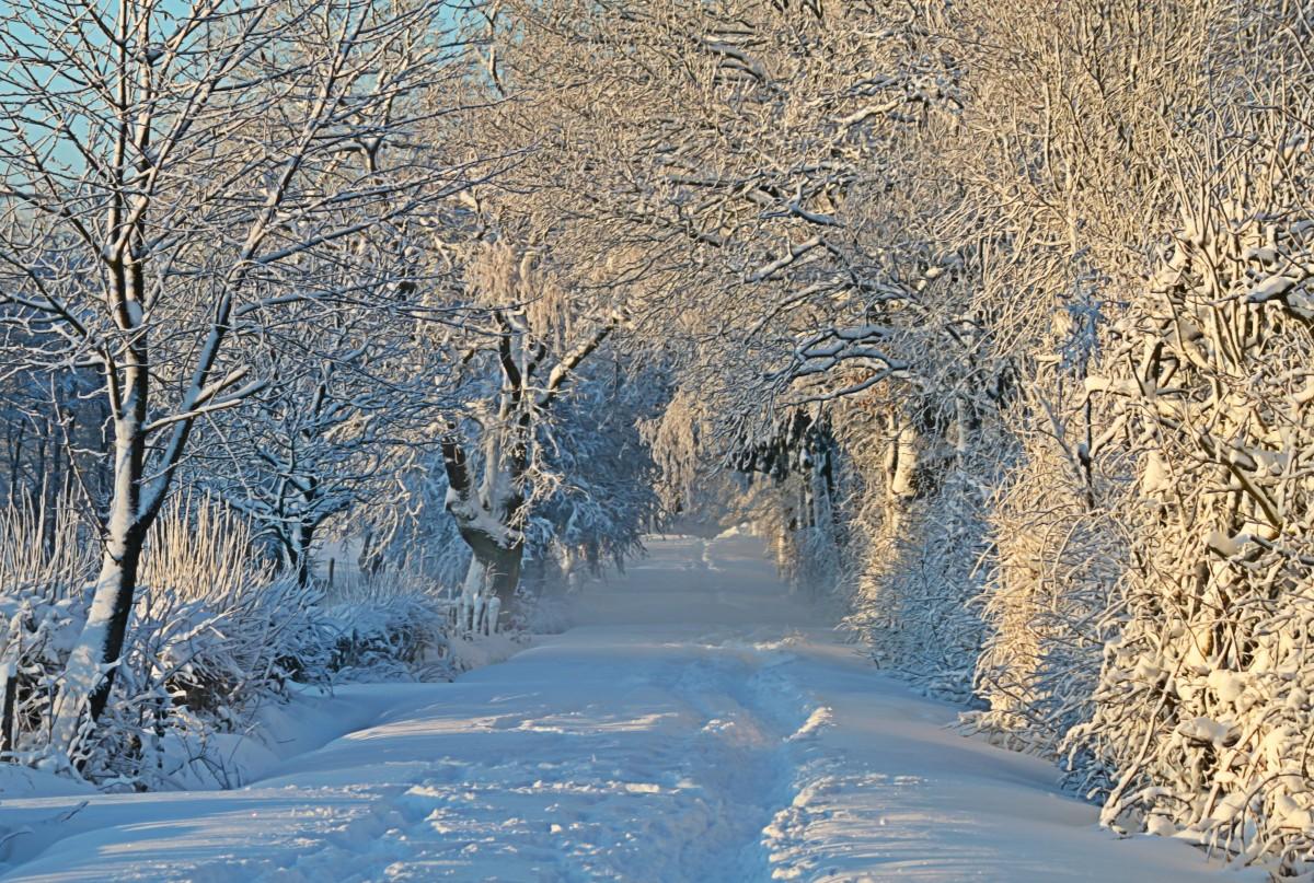 Открытка с зимой фото, шариками